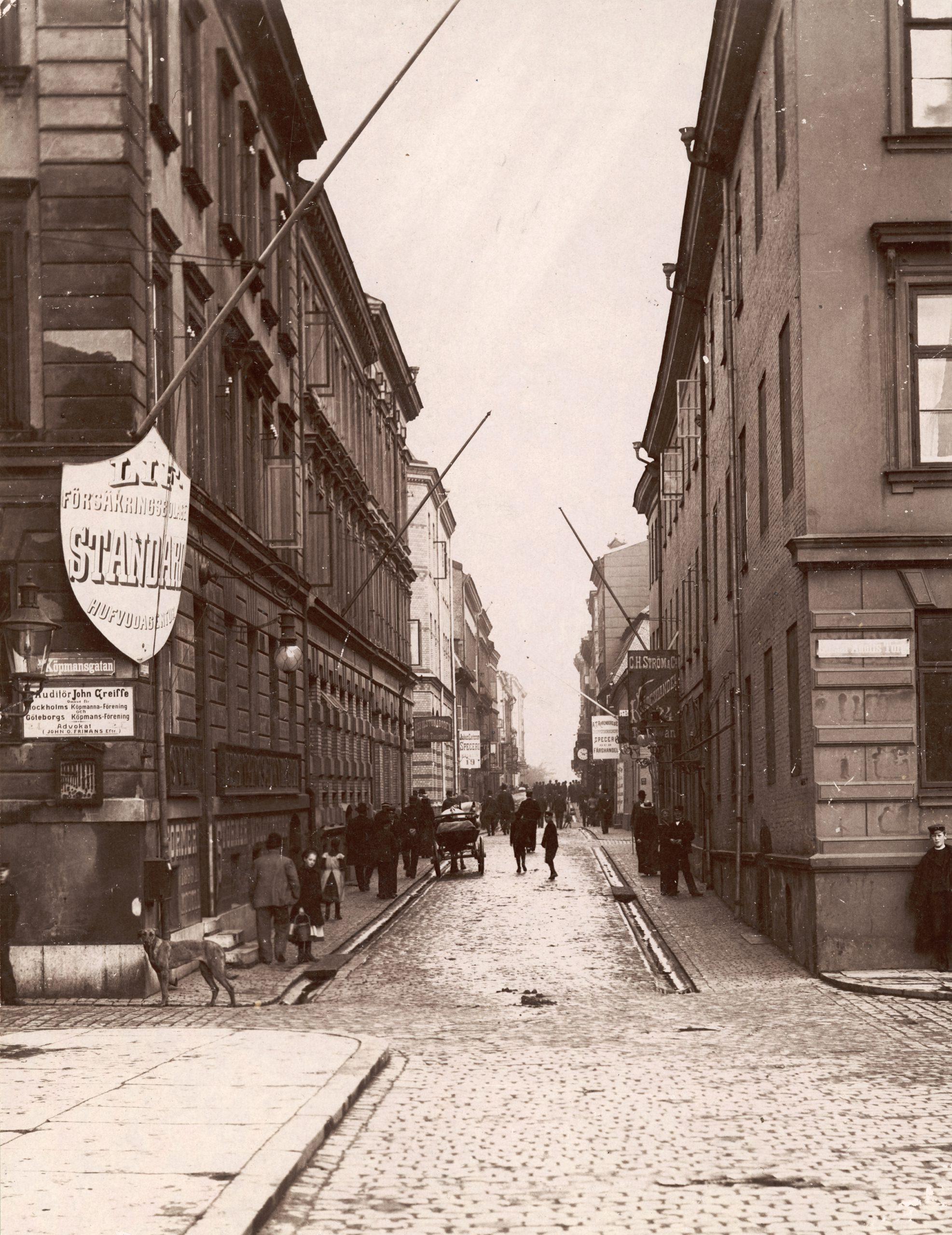 Folk i rörelse utmed Torggatan år 1901.
